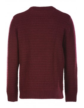 Dickies Broomall Maroon Jumper for men back