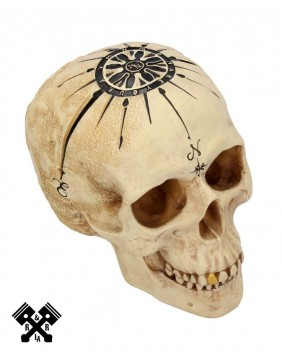 Dead Man's Map Decorative Skull, above view