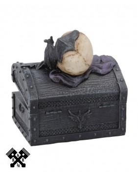 Dark Shroud Skull Box, back