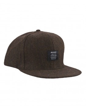 Dickies Brackenridge Cap Brown